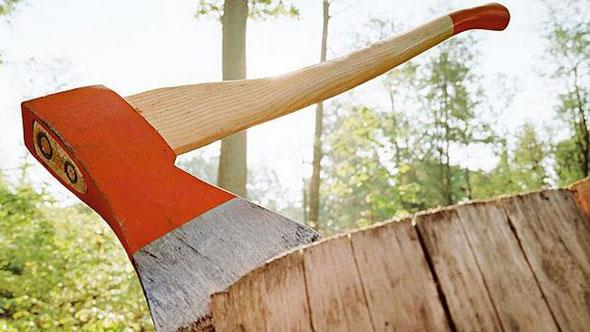 При работе пострадали деревья
