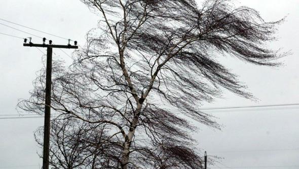 Усиление ветра и грозы
