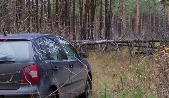 Семья жила в машине в лесу