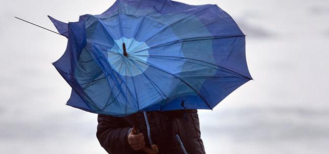 7 апреля во Владимирской области ожидается сильный ветер