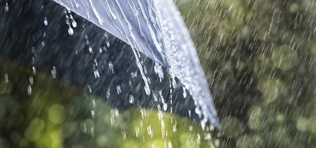 19 июня во Владимирской области ожидается гроза, дождь, усиление ветра