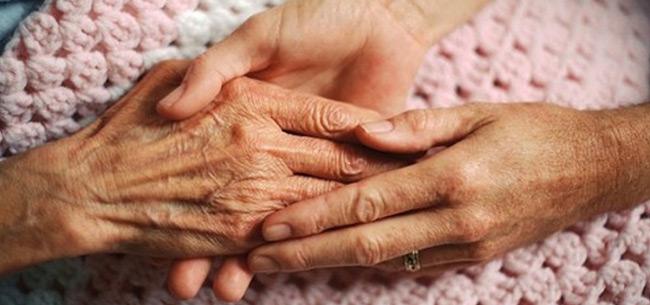 Во Владимирской области повысили вознаграждение приемным семьям для пожилых граждан