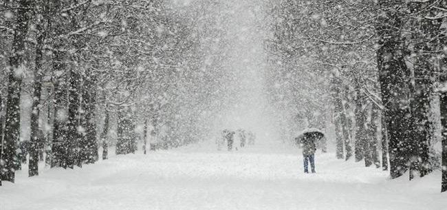 Во Владимирской области 24 декабря ожидается сильный снег
