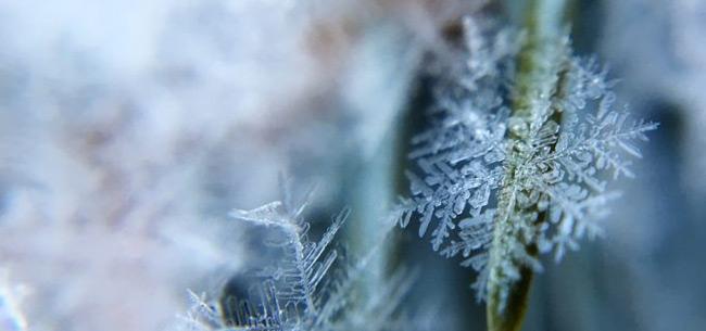 Во Владимирской области 21 и 22 февраля ожидаются сильный ветер, метель, похолодание
