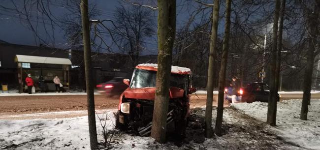 В Коврове молодой водитель на иномарке влетел в дерево