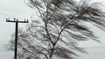 2 июня - сильный ветер