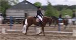 Королева конного спорта