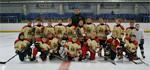 Хоккей: взлеты и падения
